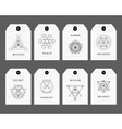 Sacred geometry signs labels set vector image vector image