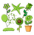 set flowers and other things in green vector image