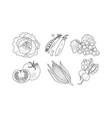 set fresh vegetables and fruits natural vector image