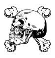 skull bone black vector image vector image