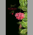 tropical flower vertical banner vector image vector image