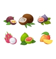 Tropical fruits set vector image vector image