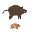 wild boar and cub isolated on white background vector image