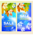 Autumn Sale 2 vertical banners vector image vector image