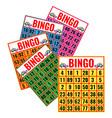 bingo colorful cards isolated vector image vector image