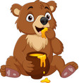 cartoon babear sitting and eating honey vector image vector image