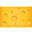 cheese texture vector image vector image
