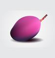 Fresh purple mango photorealistic image vector image