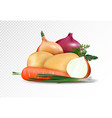 fresh vegetables on the transsparent background vector image