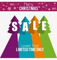 merry christmas sale limited time only vector image