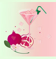 pomegranate fruits fresh cocktail glass summer vector image vector image
