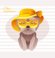 summer fashion terrier puppy dog in sweet retro vector image