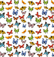 butterflies flying vector image