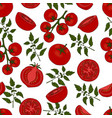 seamless pattern tomato in different types vector image