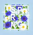 spring flowers poster vector image