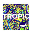 tropic design background exotic bird vector image