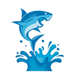 warning sign of attack of sharks vector image