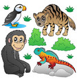 zoo animals set 2 vector image vector image