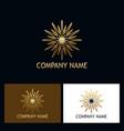 gold star shine abstract logo vector image