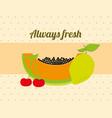 always fresh nature nutrition fruits papaya lemon vector image vector image
