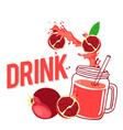 drink fresh pomegranate and glass with juice vector image vector image