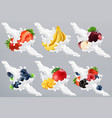 fruits and berries in milk splash yogurt vector image vector image