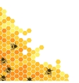 Honeycombs bright background vector image vector image