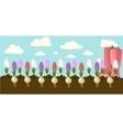 hyacinth vector image vector image