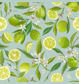lime seamless pattern citrus fruit vector image vector image