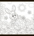 little bunny and a decorated easter egg vector image