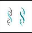 medical dna icon design vector image