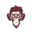 monkey eyeglass logo design template isolated vector image