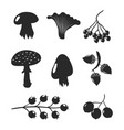 mushrooms and berries black silhouettes isolated vector image