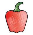 pepper fresh vegetable icon vector image
