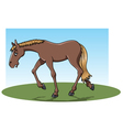 tired horse vector image vector image