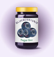blueberry jam blueberry confiture isolated jam vector image