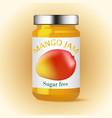 Mango glass jam design vector image