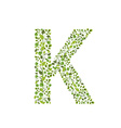 Spring green leaves eco letter K vector image vector image