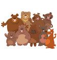 cartoon wild bears animal characters group vector image vector image