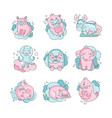cute funny cartoon baby animals sleeping set vector image vector image