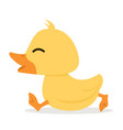 cute little yellow duck walk vector image