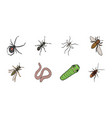 different kinds of insects icons in set collection vector image