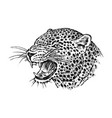 japanese wild leopard portrait asian cat profile vector image vector image