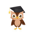 lovely little owlet wearing graduation cap and vector image