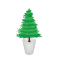 Pine Tree in A Flower Pot vector image vector image