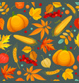 seamless pattern with autumn leaves pumpkin corn vector image