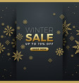 winter sale background banner template design vector image vector image