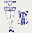 woman in corset fashion lingerie vector image