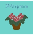 flat stylish background plant vector image