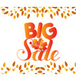 banner with the words big sale autumn leaves vector image